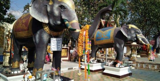 Making fortune wishes at Wat Doi Kham
