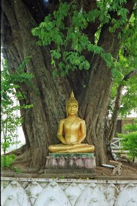 Buddha under bodhi tree at Wat That Luang