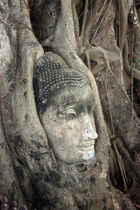 famous Buddha-head in Ayutthaya