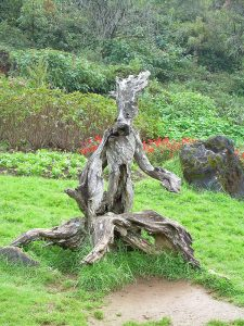 natural wooden sculpture in national park in Sapa