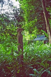 Chunchiet graveyard in the jungle
