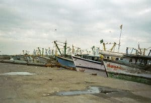 fishing boats in Chennai
