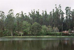 at Kodaikanal lake