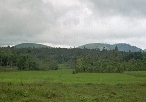 tropical rain shower nearing at Periyar