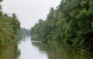 boat trip to backwaters from Alleppey to Kollam